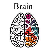 Brain on Fear