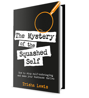 The Mystery of the Squashed Self Book Cover
